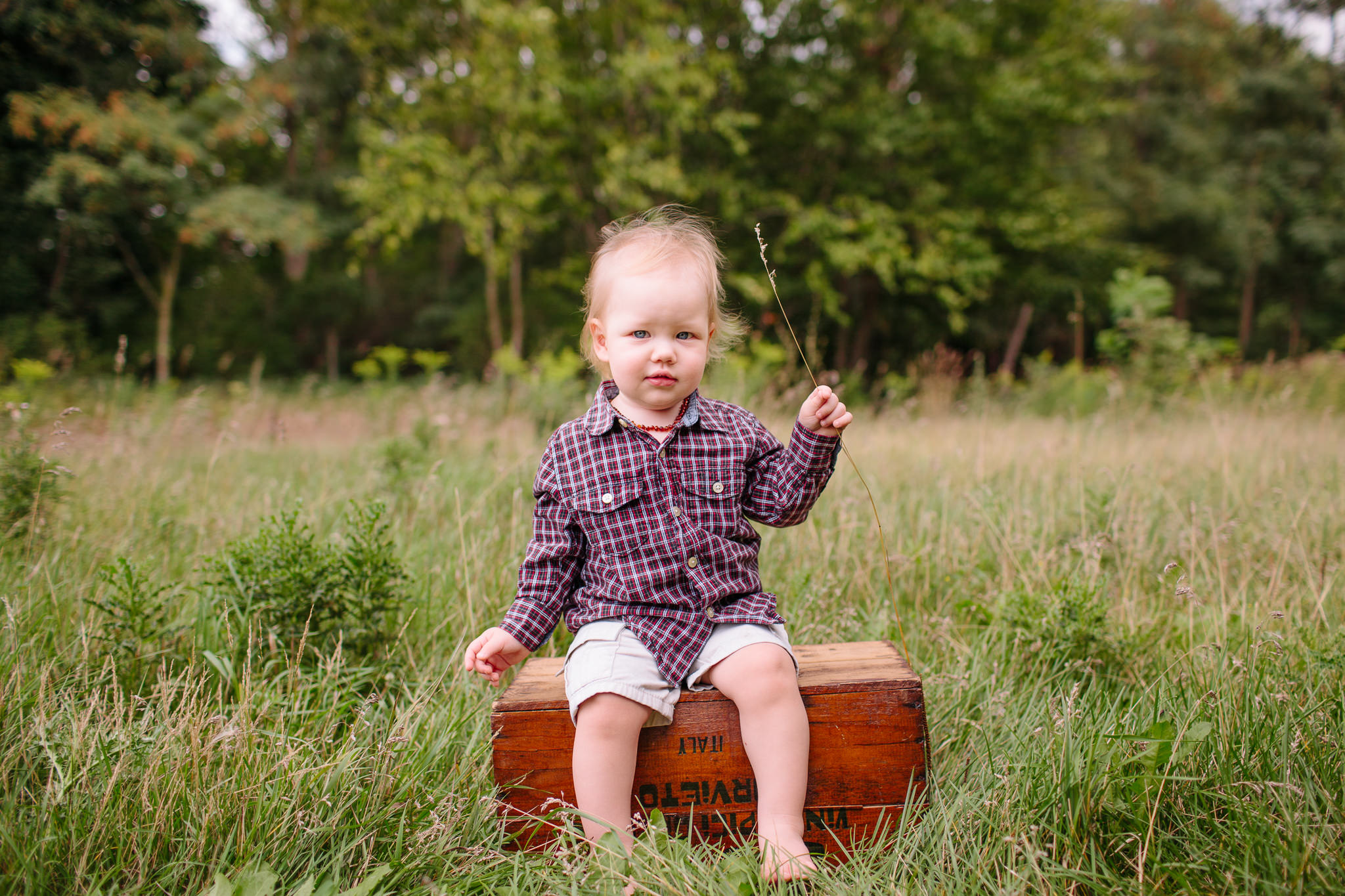 toddler sitting on box in field holding grass