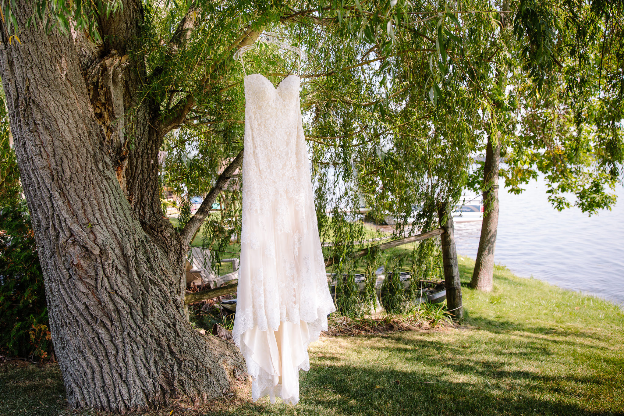 wedding dress hanging in tree by lake