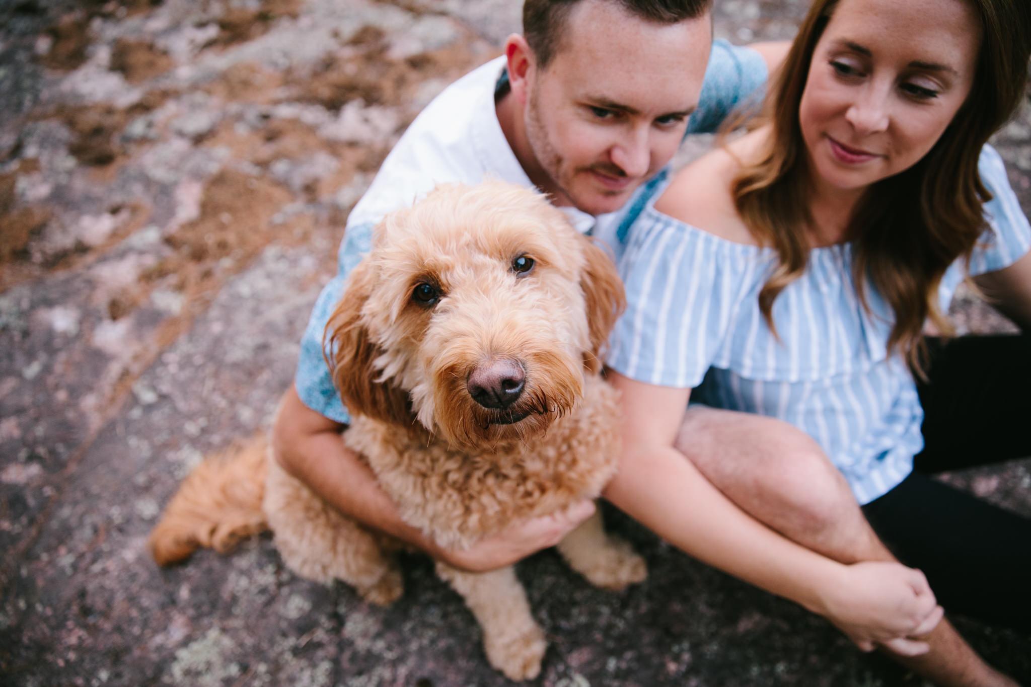 dog looking up at camera while couples smiles at dog