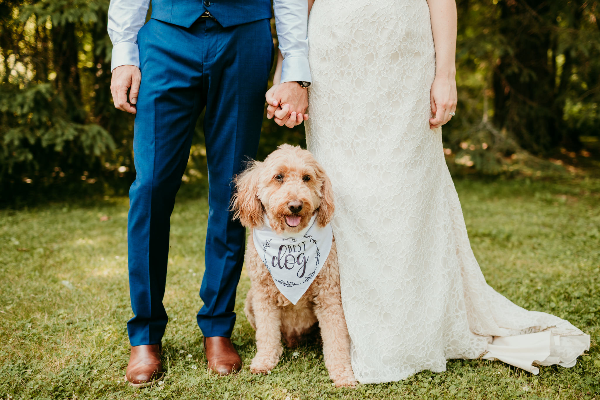 bride and groom holding hands while their dog sits between them